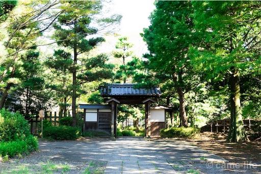 f:id:tsuki_neko:20180818192852j:image