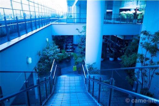 f:id:tsuki_neko:20180820192543j:image