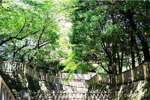 f:id:tsuki_neko:20180822192622j:image