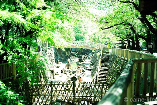 f:id:tsuki_neko:20180822192632j:image