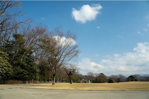 f:id:tsuki_neko:20190417184622j:image
