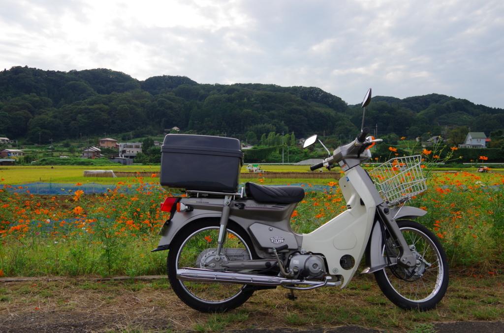 f:id:tsukifune77:20161004154838j:plain