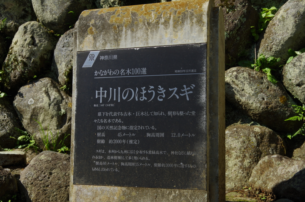 f:id:tsukifune77:20161004161610j:plain