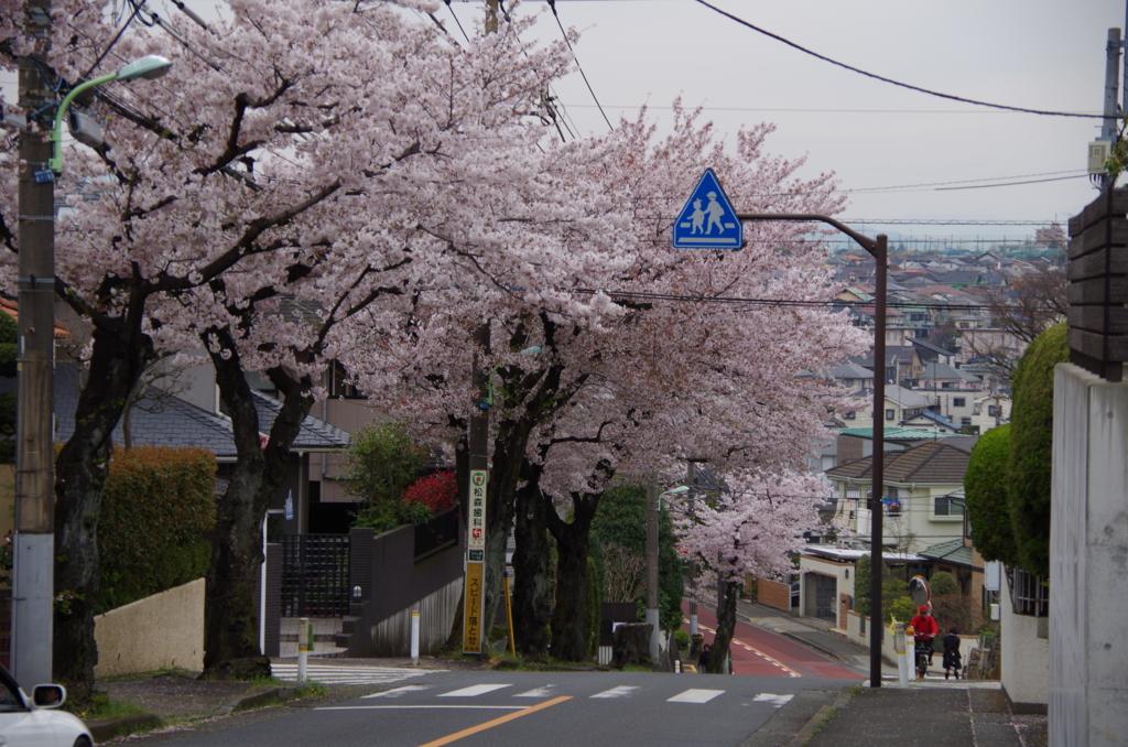 f:id:tsukifune77:20170413184449j:plain