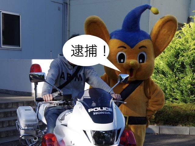 f:id:tsukifune77:20191118141612j:plain