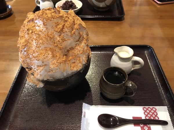 f:id:tsukihi-shoyo:20200607121534j:plain
