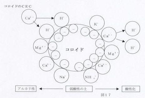 f:id:tsukihisa:20180610052802j:plain
