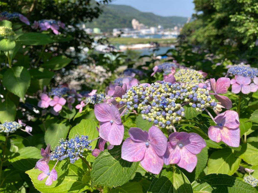 f:id:tsukikageya:20210616211500j:image