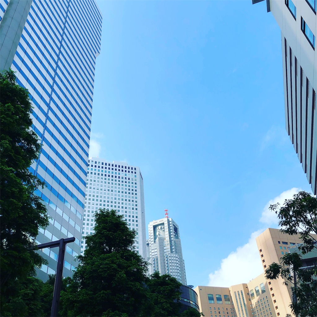 f:id:tsukimeguri:20190622080253j:image