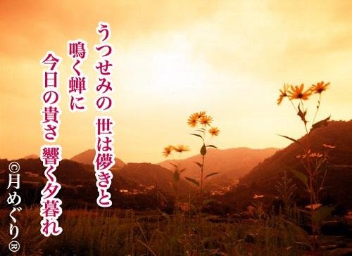 f:id:tsukimeguri:20190902111509j:plain
