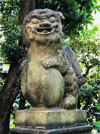 f:id:tsukimeguri:20191005173247j:image