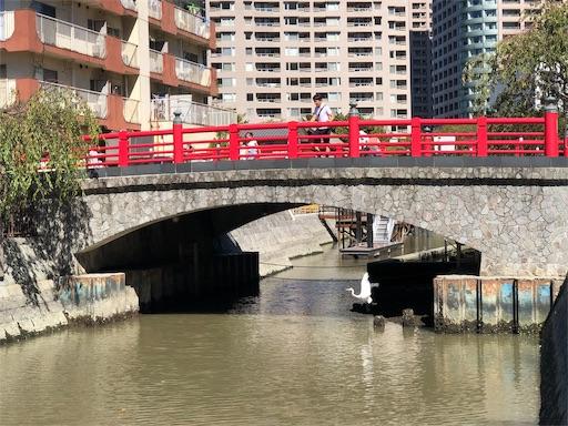 f:id:tsukimeguri:20191013200414j:image