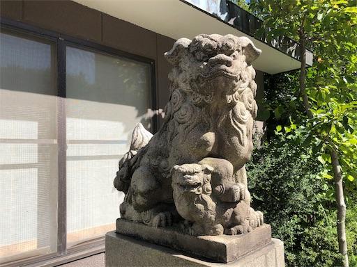 f:id:tsukimeguri:20191013201500j:image