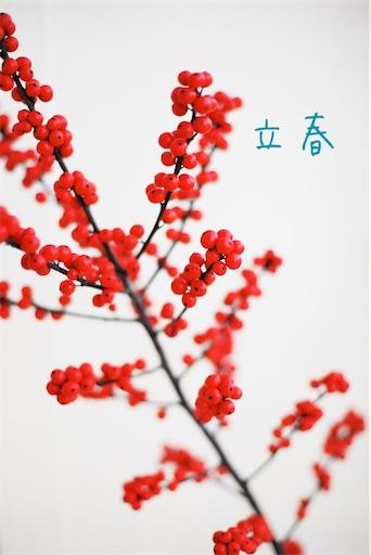 f:id:tsukimeguri:20200204083530j:image