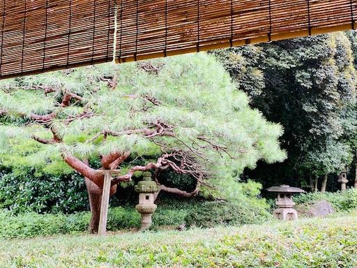 f:id:tsukimeguri:20201001210913j:image