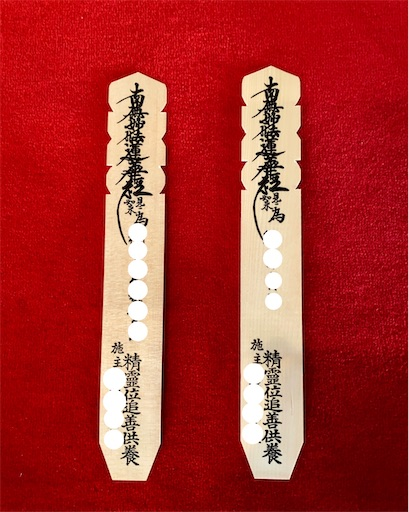 f:id:tsukimeguri:20210111091335j:image