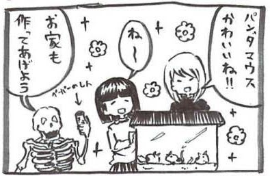 f:id:tsukimi3190:20190818122104j:plain