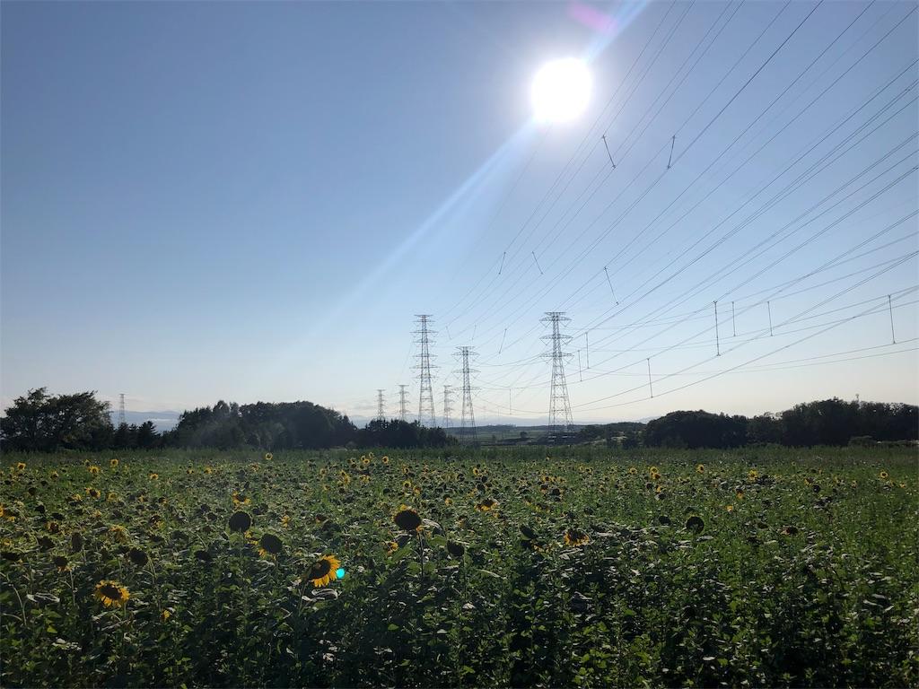 f:id:tsukimi3190:20190818191204j:image