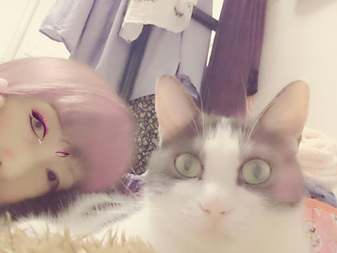 f:id:tsukimihime:20170822090927j:image