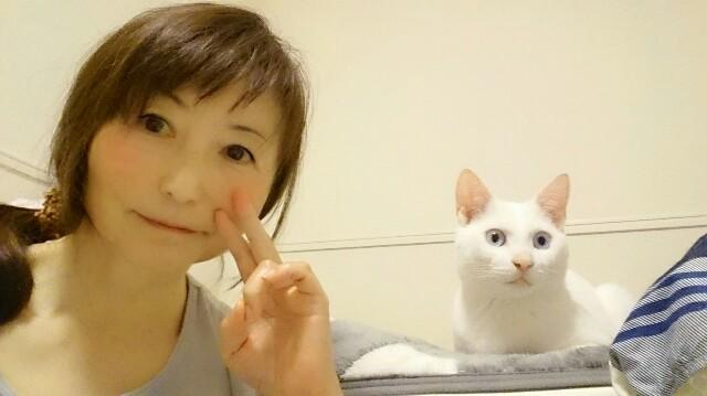 f:id:tsukimihime:20200620220413j:image