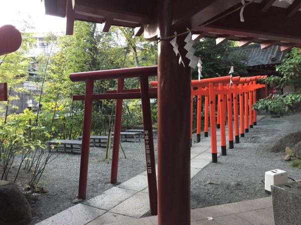 f:id:tsukimiishii:20180408204534j:plain