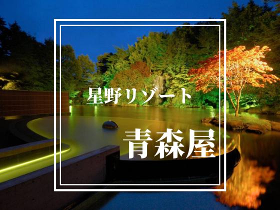 f:id:tsukino0314:20210509132847p:plain