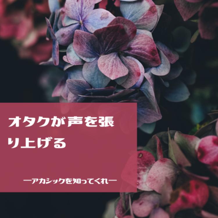 f:id:tsukino25:20190305183733p:plain