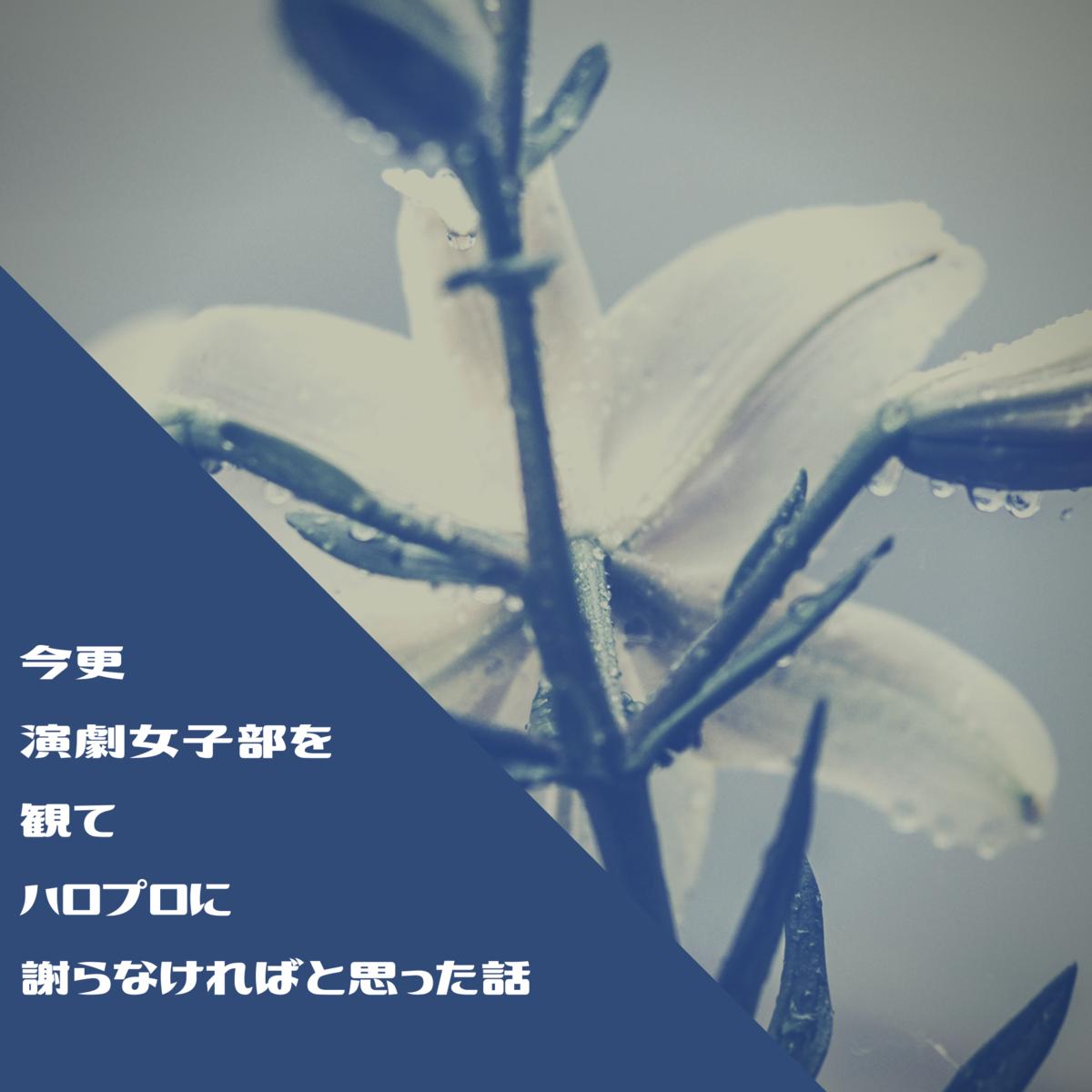 f:id:tsukino25:20200804062722p:plain
