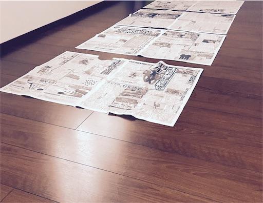 f:id:tsukinowayuki:20170628145131j:image