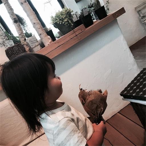 f:id:tsukinowayuki:20170922162228j:image