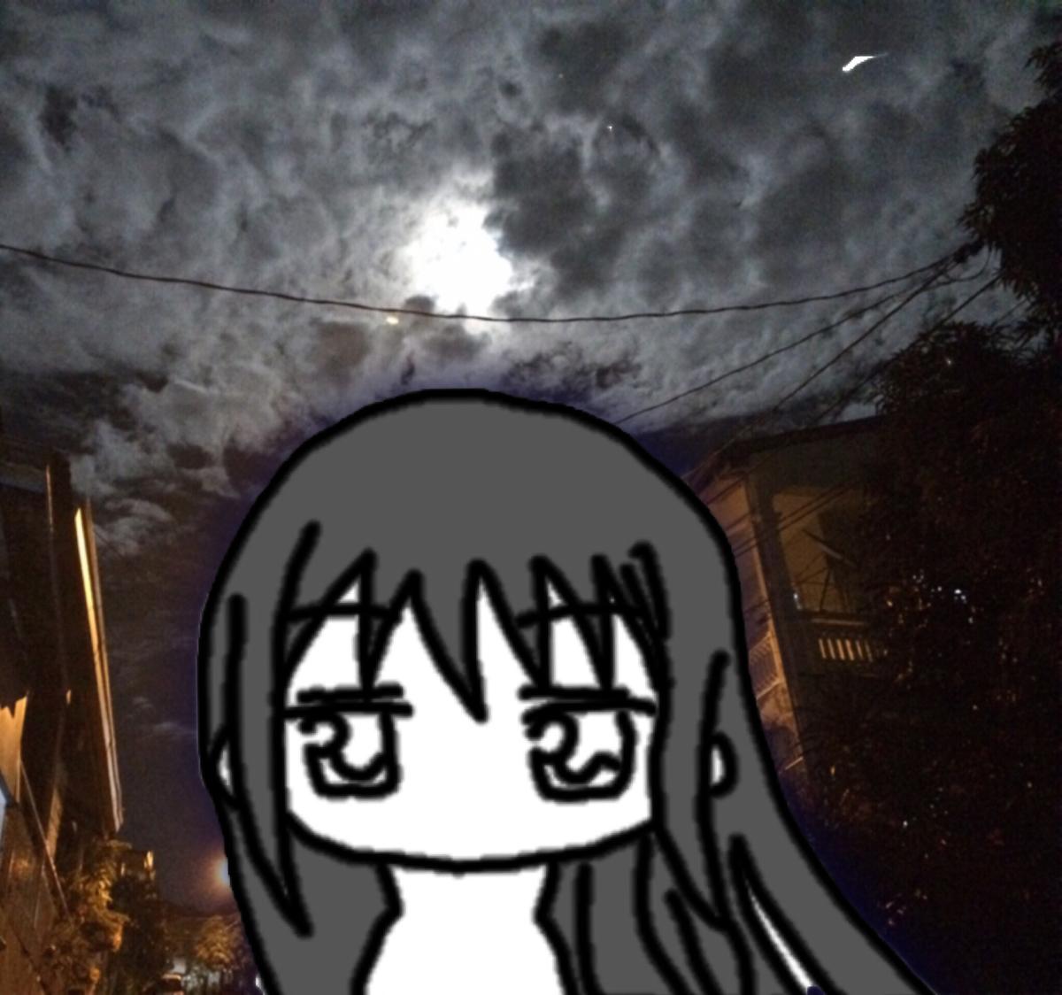 f:id:tsukiruruka:20200607011753j:plain