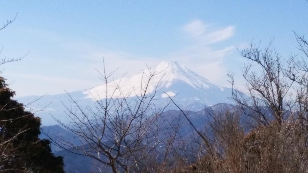 f:id:tsukisai:20160608041745j:plain
