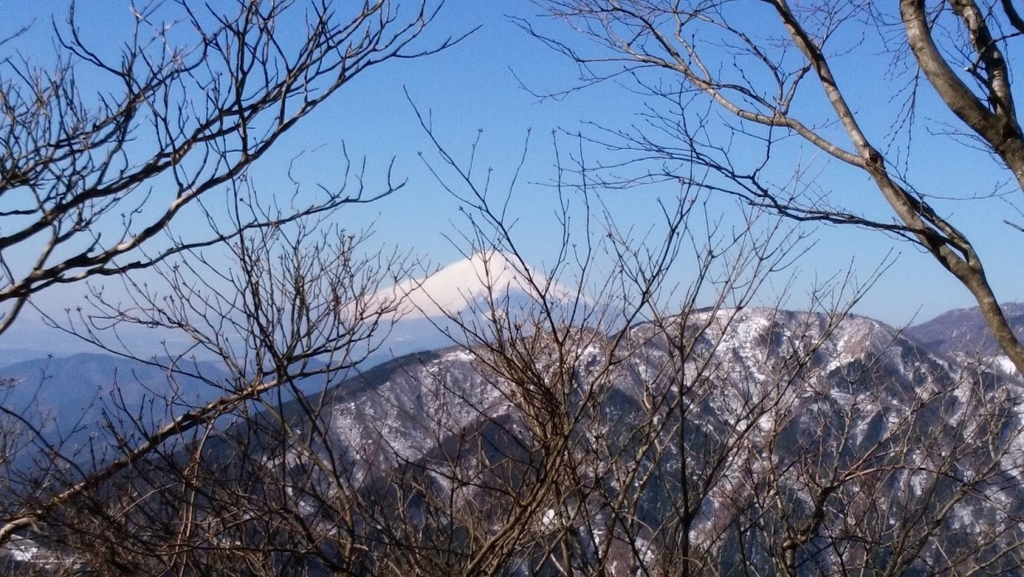 f:id:tsukisai:20160612033230j:plain