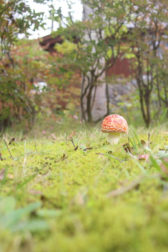 f:id:tsukito_yu:20151004183409j:plain