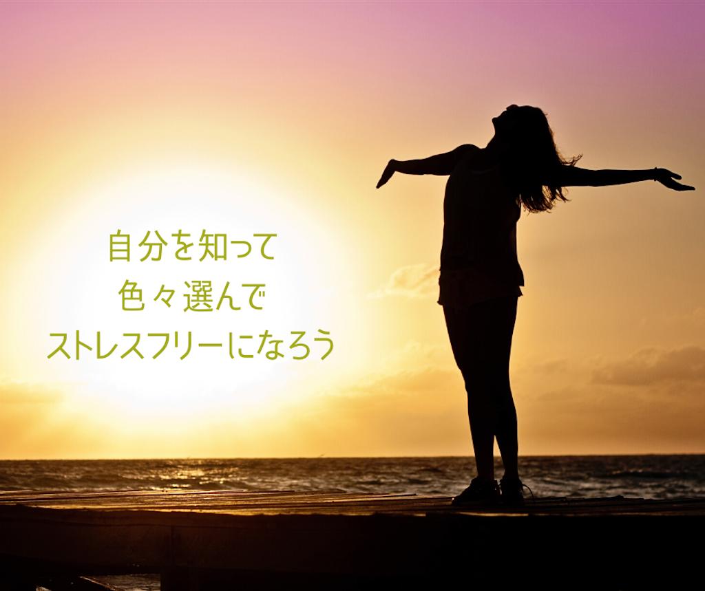 f:id:tsukitohammock:20200211103229p:image
