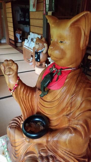 f:id:tsukiya21:20190710184902j:image