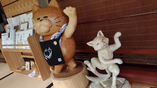 f:id:tsukiya21:20190710184918j:image