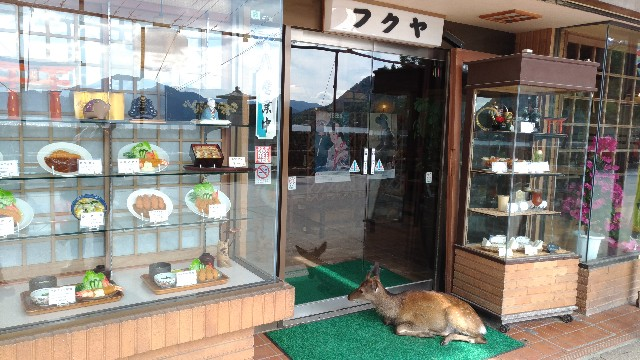 f:id:tsukiya21:20190713071537j:image