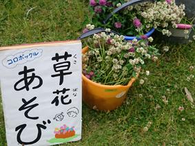 f:id:tsukuba-life:20180821143254j:plain