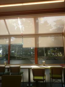 f:id:tsukuba-life:20181003112544j:plain