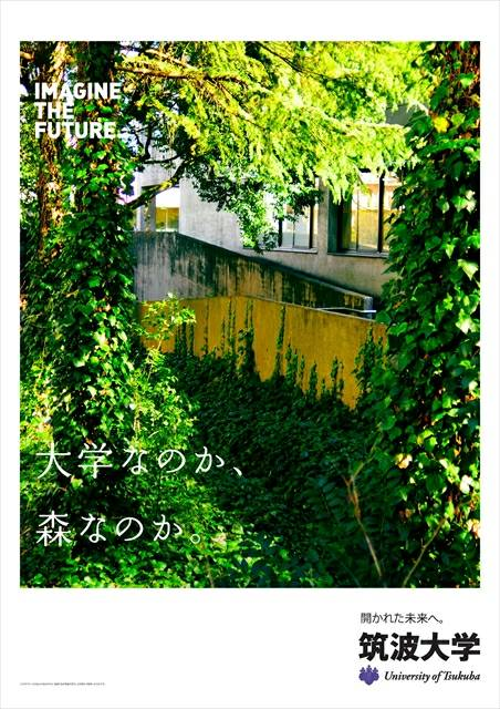 f:id:tsukuba2018:20180710212142j:plain