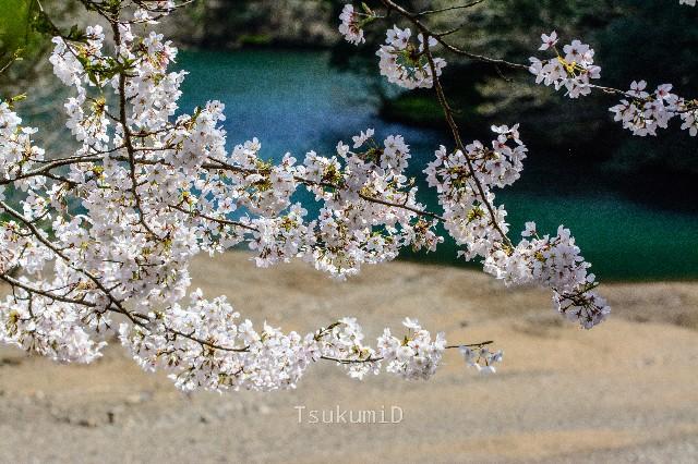 f:id:tsukumiitan:20210406021237j:image