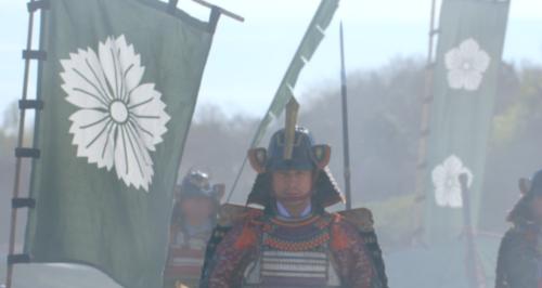 斎藤高政軍の軍旗には撫子の紋が