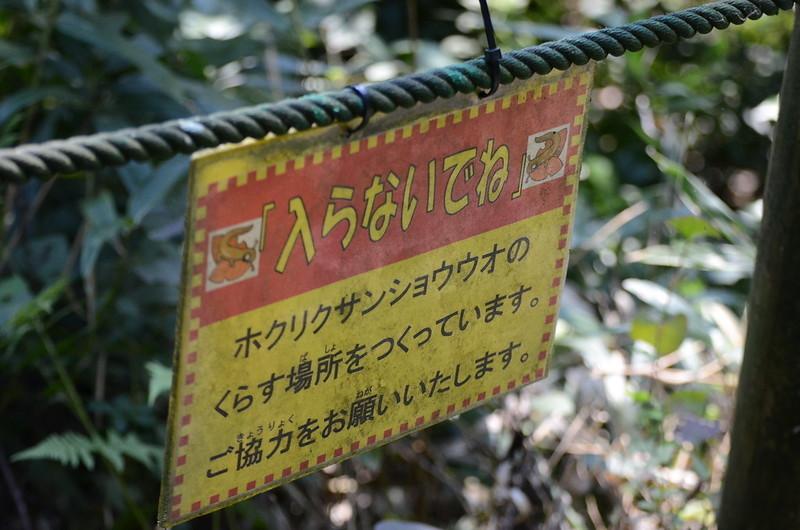 f:id:tsukunepapa:20111008123635j:plain