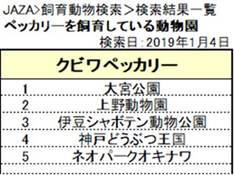 f:id:tsukunepapa:20190104204649p:plain