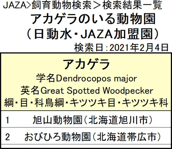 f:id:tsukunepapa:20210204225643j:plain
