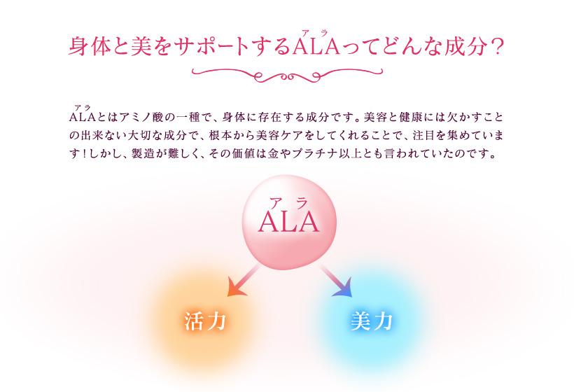 f:id:tsukunyan:20161216152654j:plain