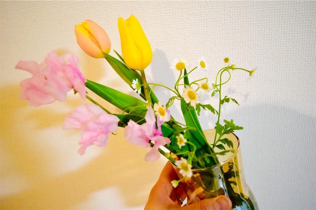 f:id:tsukuri365:20210222231231j:image