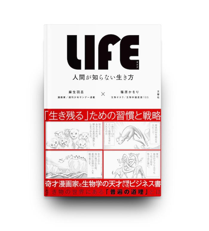 f:id:tsukuruiroiro:20161215112529j:plain