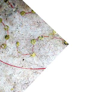 f:id:tsukurukaiwatch:20100630020006j:image